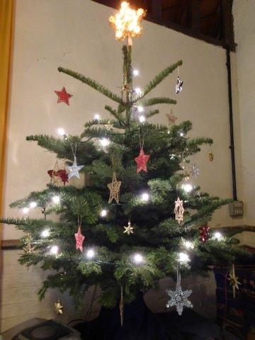 the star tree